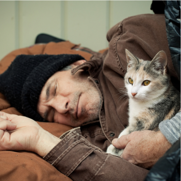 Help Provide Food and Care to Pets of the Homeless